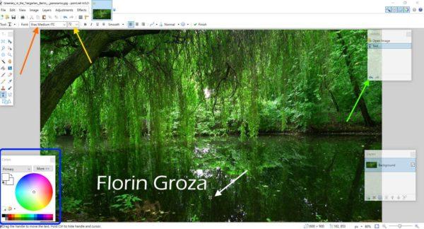 Piant.NET, program de adăugat text pe imagini și poze